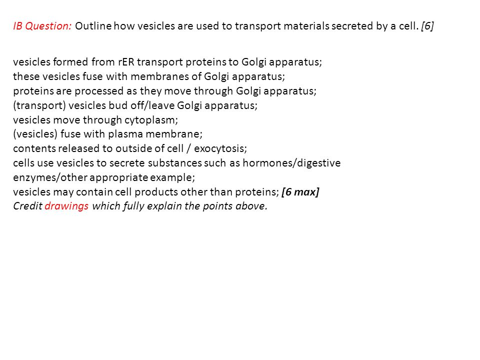 IB Question: Outline how vesicles are used to transport materials secreted by a cell. [6]